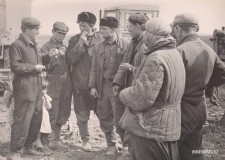 27-Совхоз-Ново-Алексндровка-1964-год